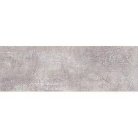SNOWDROPS GREY 20x60