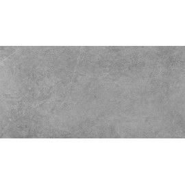 TACOMA SILVER 59,7x119,7 GAT.1